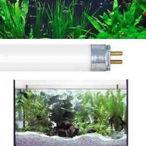 Лампы для аквариума Т8