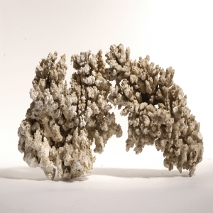 Сухой рифовый камень Stonecorals