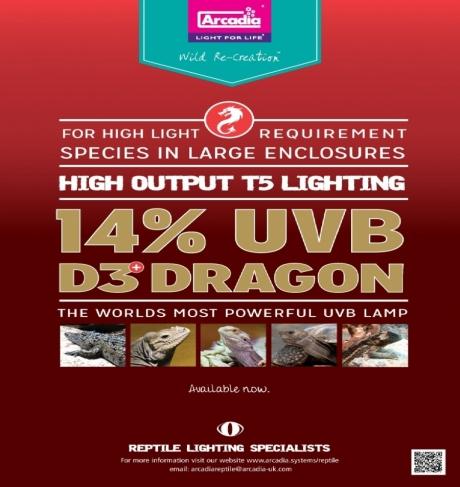 Arcadia D3 + Dragon T5 14% UVB