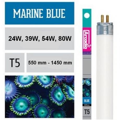 Arcadia T5 Marine Blue