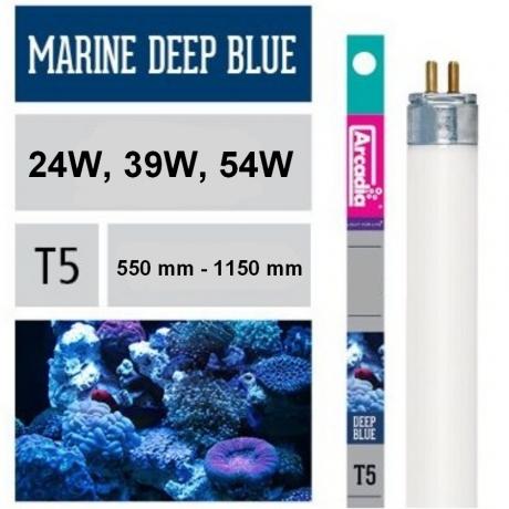 Arcadia Marine Deep Blue