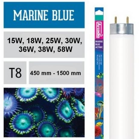 Лампа Arcadia Marine Blue 420 nm (Актиник) T8
