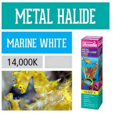Металлогалогенная лампа Arcadia Metal Halide Marine White 14,000K