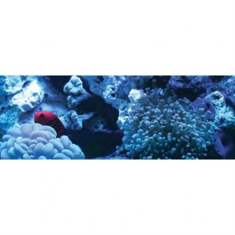 Arcadia Т5 Marine Deep Blue