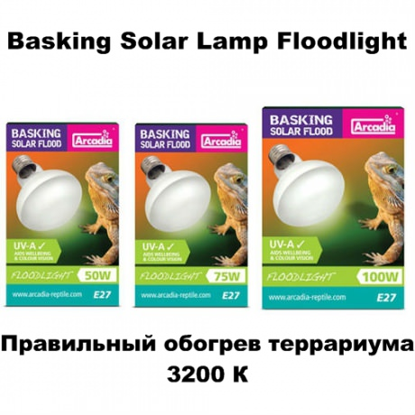 Лампа Arcadia Basling Solar Lamp Floodlight
