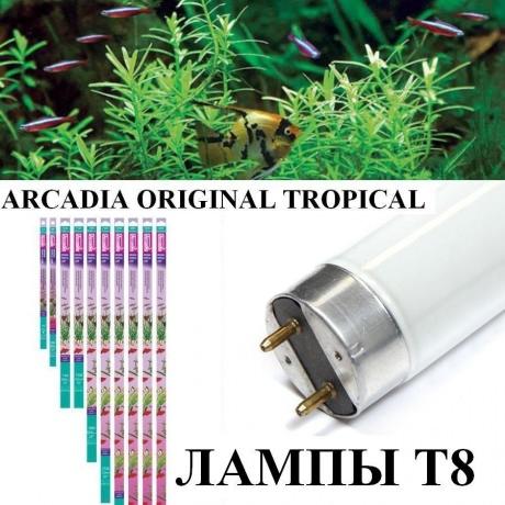 Лампы для аквариумных растений Т8 Original Tropical