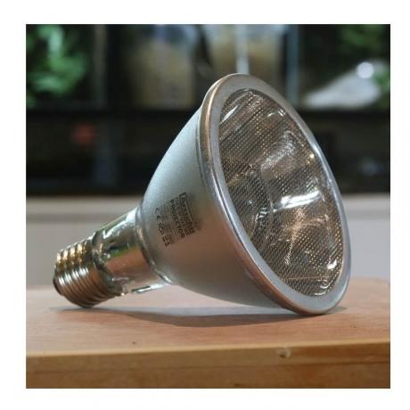 Arcadia Deep Heat Projector Lamp 50W