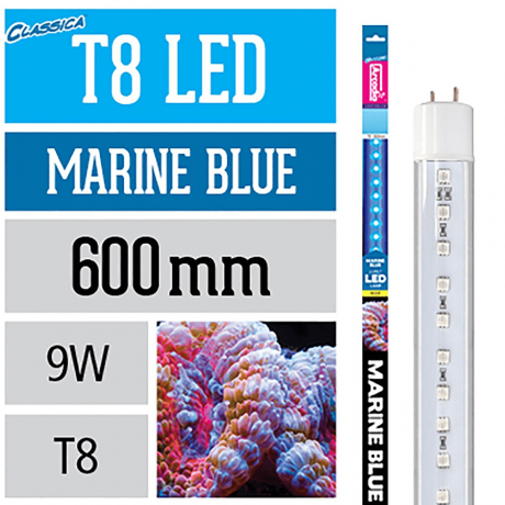 T8 LED Marine Blue 600 мм Т8