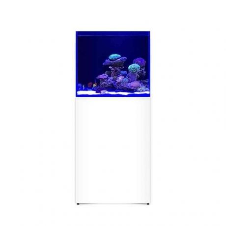 Морской аквариум на 250 литров L`AQUARIUM 250
