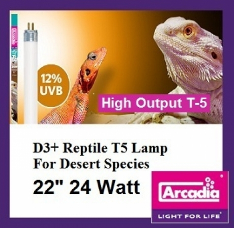 Arcadia Т5 High Output D3 + Desert