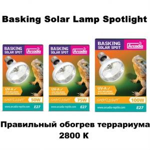 Лампы для обогрева террариума Arcadia Solar Spotlight