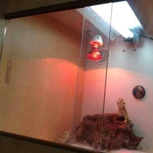 Светильник для террариума UV FLOOD LIGHT