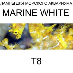 Лампа Arcadia Marine White 14,000К T8