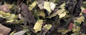 Композитный корм для рыб состоящий из водорослей