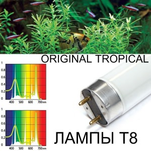 Лампы для растений и рыб Т8 Original Tropical