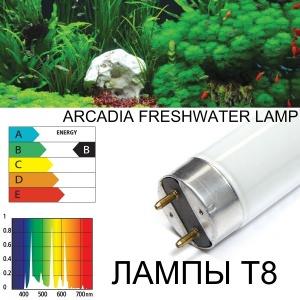 Лучшие лампы Т8 для травника