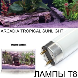 Лампа T8 TROPICAL SUNLIGHT
