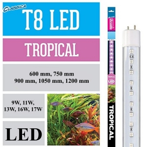 Лампа Arcadia T8 Led Tropical