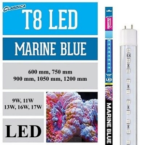Arcadia T8 Led Marine Blue