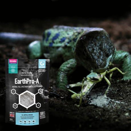 Витамины для рептилий Arcadia EarthPro-A 100 грамм